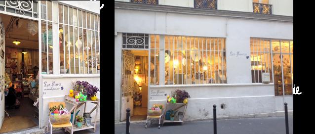 boutique LES FLEURS MEYONIE