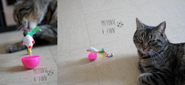 Kittybox meyonie 2