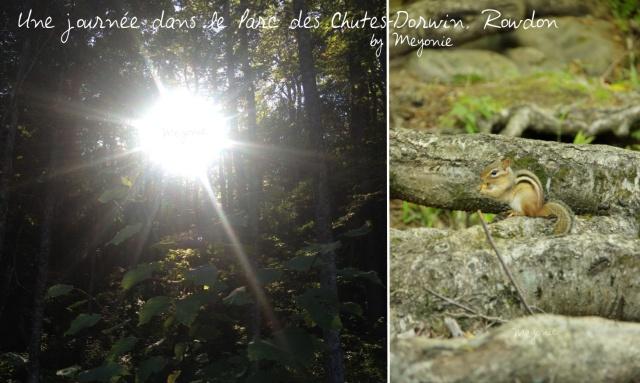 une-journée-dans-le-parc-des-chutes-dorwin-Meyonie-11