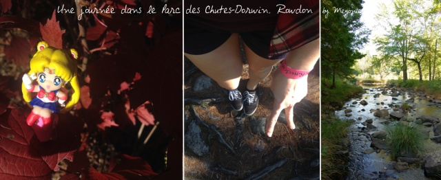 une-journée-dans-le-parc-des-chutes-dorwin-Meyonie-12