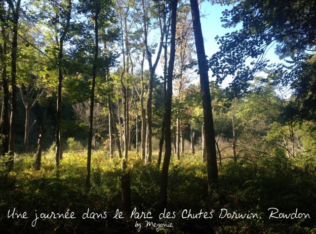une-journée-dans-le-parc-des-chutes-dorwin-Meyonie-15
