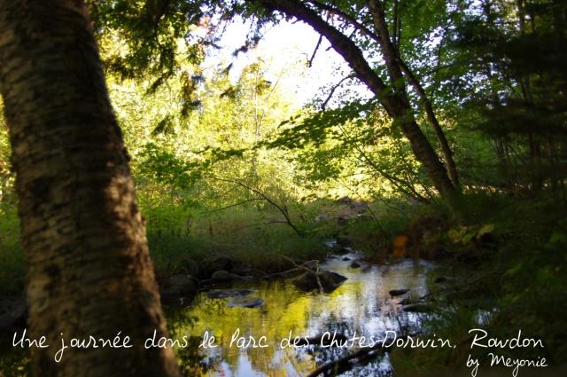 une-journée-dans-le-parc-des-chutes-dorwin-Meyonie-4
