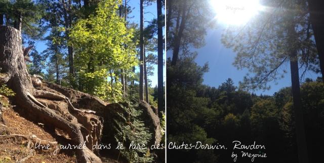 une-journée-dans-le-parc-des-chutes-dorwin-Meyonie-5