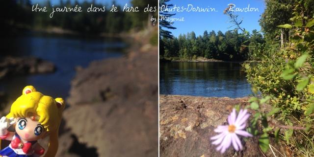 une-journée-dans-le-parc-des-chutes-dorwin-Meyonie-9