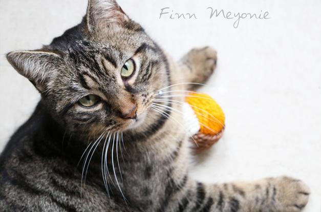 miaoubox-mars-2016-Meyonie-Finn