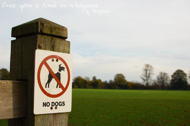 Wargrave-no-dogs-cricket-ground-Meyonie