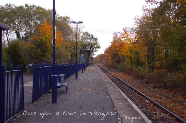Wargrave-station-Meyonie