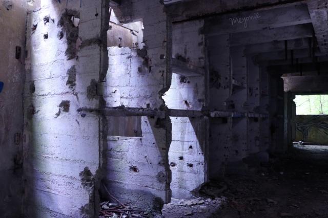 urbex-en-famille-centrale-électrique-abandonnée-murs-meyonie