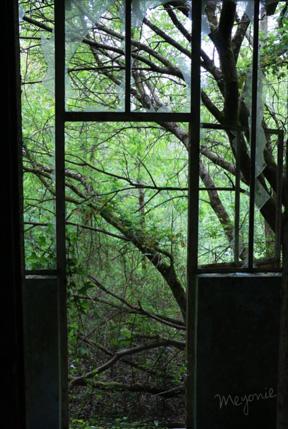 urbex-en-famille-maison-abandonnée-vue-sur-la-forêt-meyonie