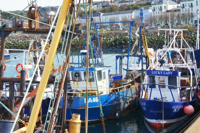 port-howth-irlande-meyonie