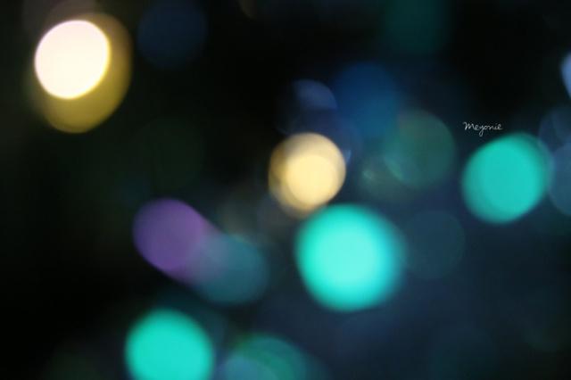 meyonie-sapin-de-noel-lumieres-guirlande