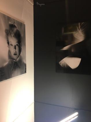 meyonie muzeo 7